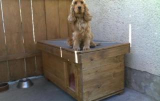 Kvalitná psia búda z paluboviek pre kokeršpaniela