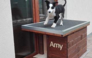Zateplená psia búda - Amy