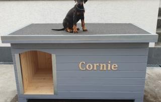 Zateplená psia búda - Cornie